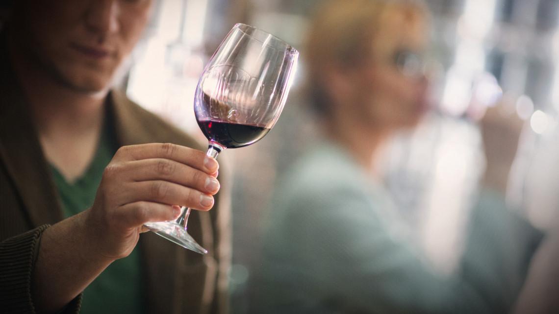 Díjazták a 2019-es év legjobb magyar bortermelőjét: mutatjuk a nyertest
