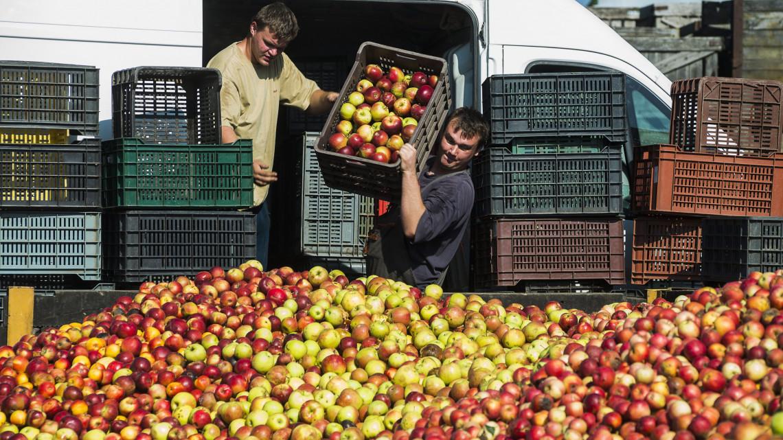 Rohamosan fejlődik Szabolcs-Szatmár-Bereg megye: új üzemek épülnek