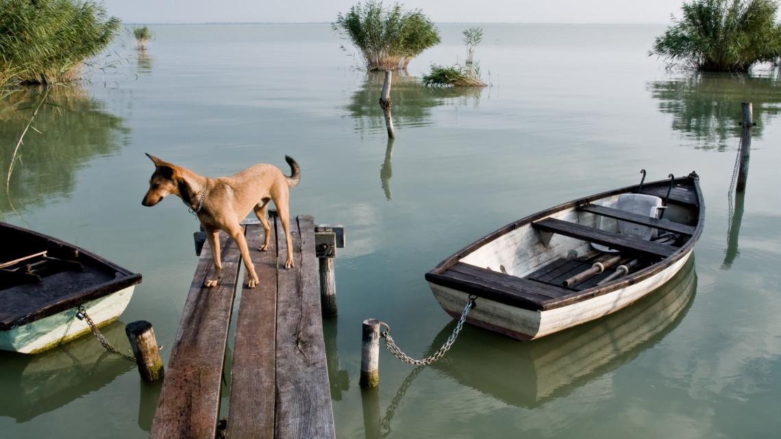 Ilyen strandok sem nagyon voltak eddig a Balatonnál: fontos fejlesztések indulnak