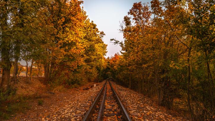 Elkeserítő adatok: rengeteg baleset történik vasúti átjárókban