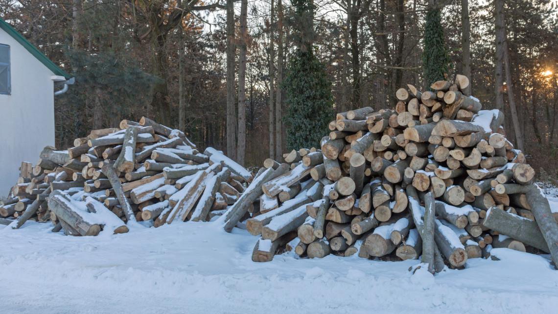 Így trükköznek a tűzifával télen a dörzsölt kereskedők Magyarországon