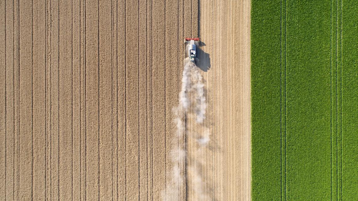Videó: milyen kihívások állnak az agrárium előtt a következő években?