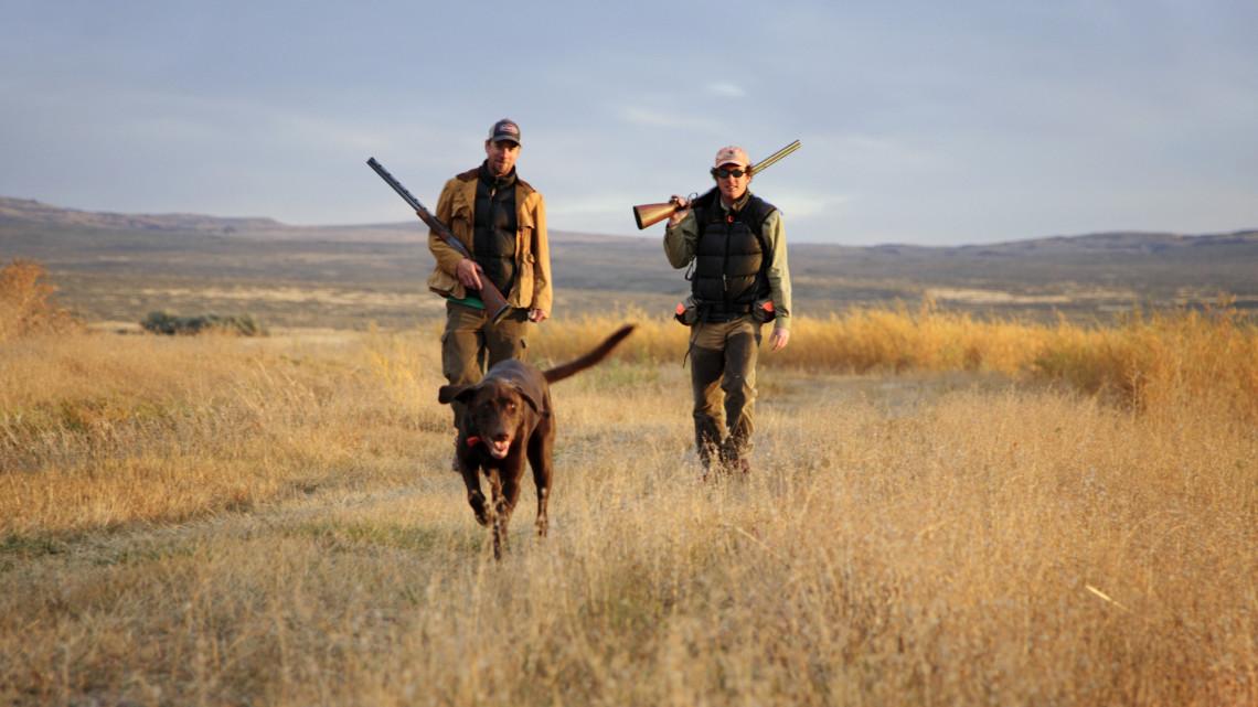 Rengeteg pénzt gyűjtöttek: több helyen indult el a vadászat