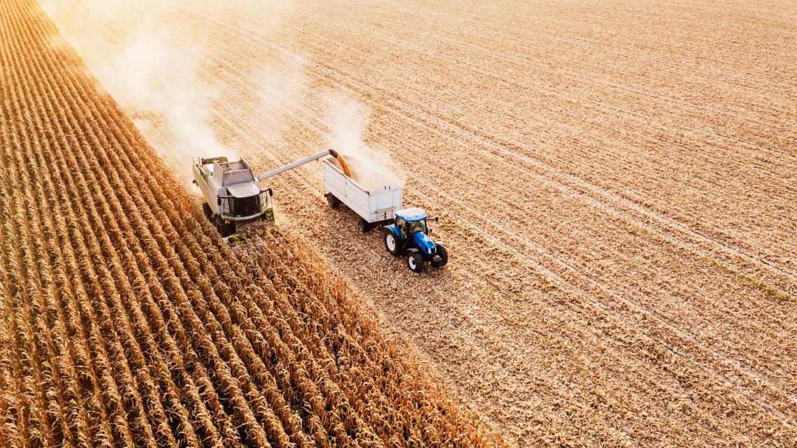 Hivatalos: jó évet zárt a magyar mezőgazdaság
