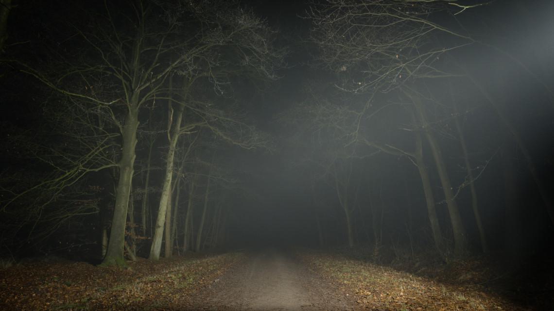 A két férfi ufót keresett a Pilisben: történetük váratlan fordulatot vett