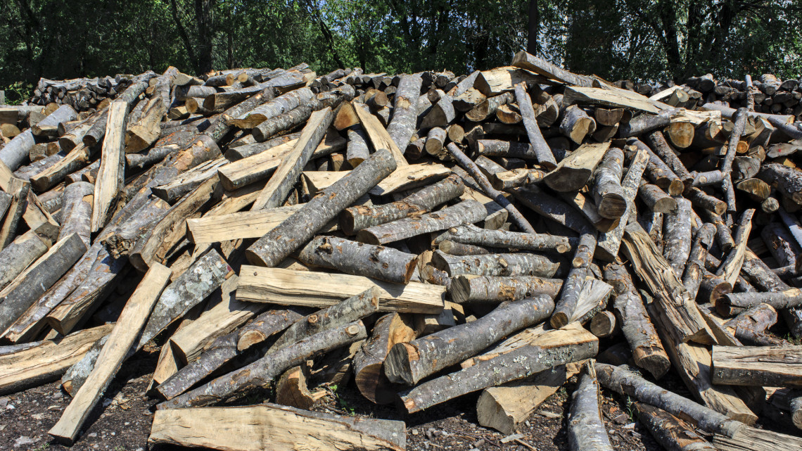 Egekbe szökött a tűzifa ára: sok háztartás inkább ez a fűtési technikát választja