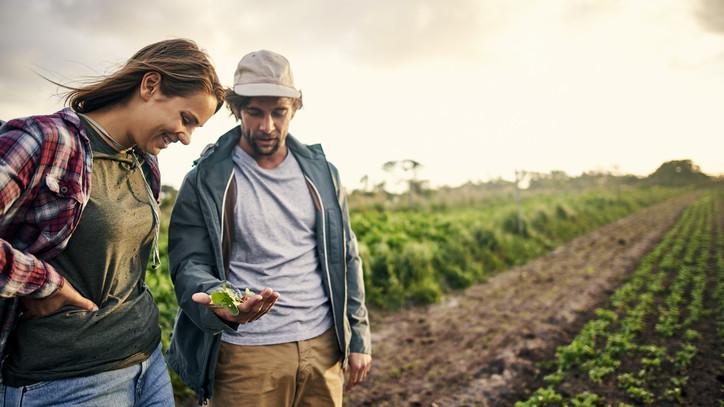 Új irány a magyar agráriumban: jöhet a generációváltás