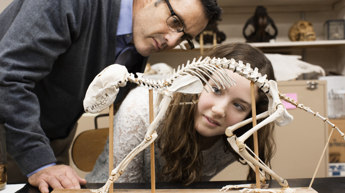 Költözik a Természettudományi Múzeum: ez a vidéki város lesz az új helyszín