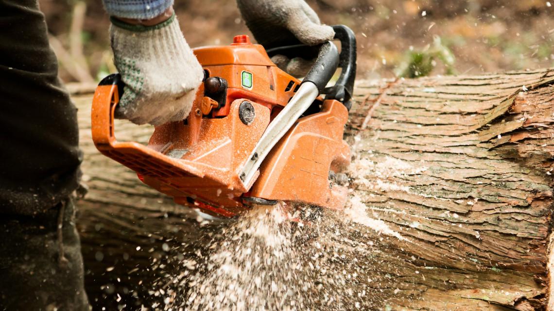 Ezt a 4 dolgot mindenképp tartsd be, ha akkus kerti géped van!