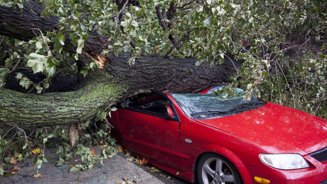 Áttombolta a hétfőt a Ciara viharciklon: ez történt az országban