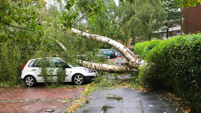 Borzalmas idő tarolta le az országot: hatalmas károkat okozott a nagy erejű, viharos szél