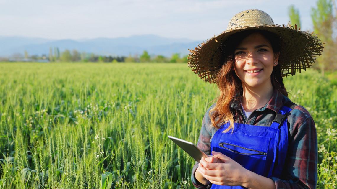 Új korszak a mezőgazdaságban: egyre nagyobb szerep jut a digitális technológiáknak