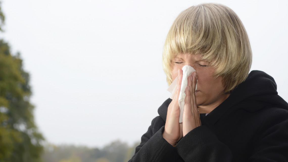 Erre figyelmeztet a szakértő: idén korábban csap le a pollenszezon
