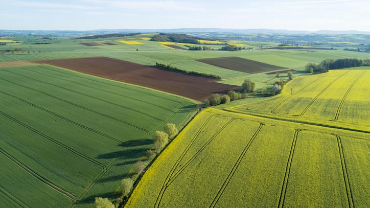 Hatalmas segítség lehet az európai zöld- megállapodás: ezeket a területeket fejlesztenék