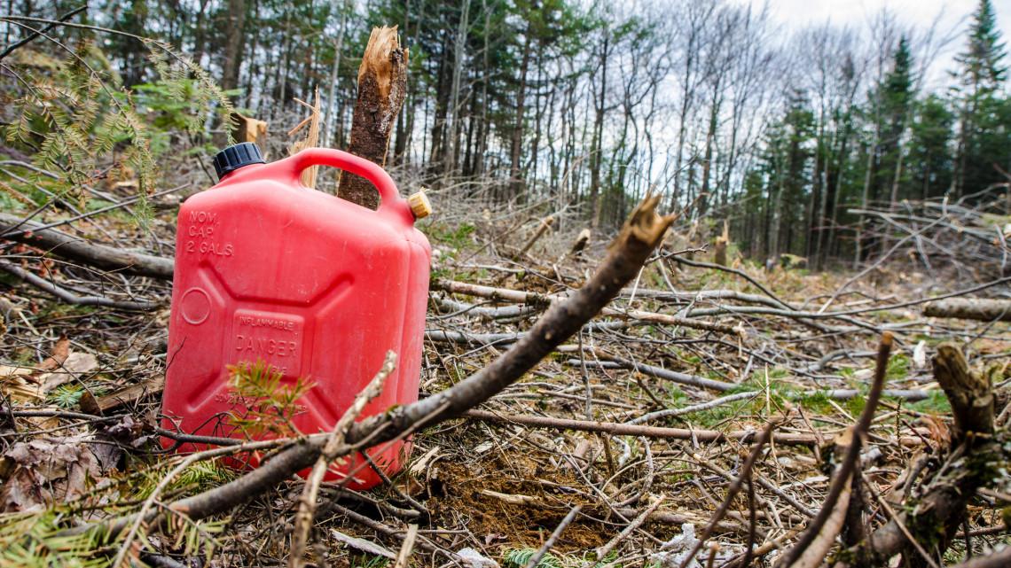 Fákat mérgezett a hibátlan panorámáért: több tucat növény pusztult el Zamárdiban