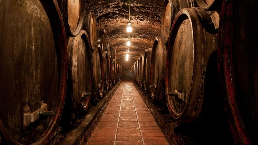 Így törnének ki a zalai sötétségből: fantasztikus borokat készít Bussay Dóri
