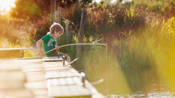 Milliós beruházás: természetház épül a Kerek tó mellett