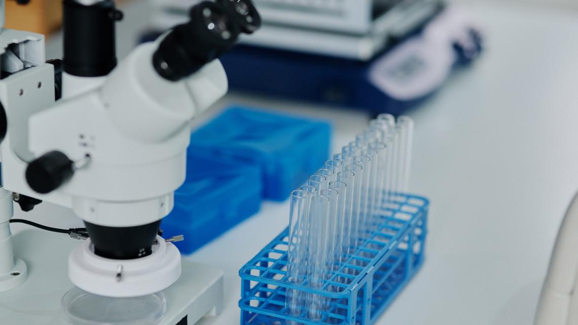 Koronavírus: gyógyszeres terápiát fejlesztenek Magyarországon