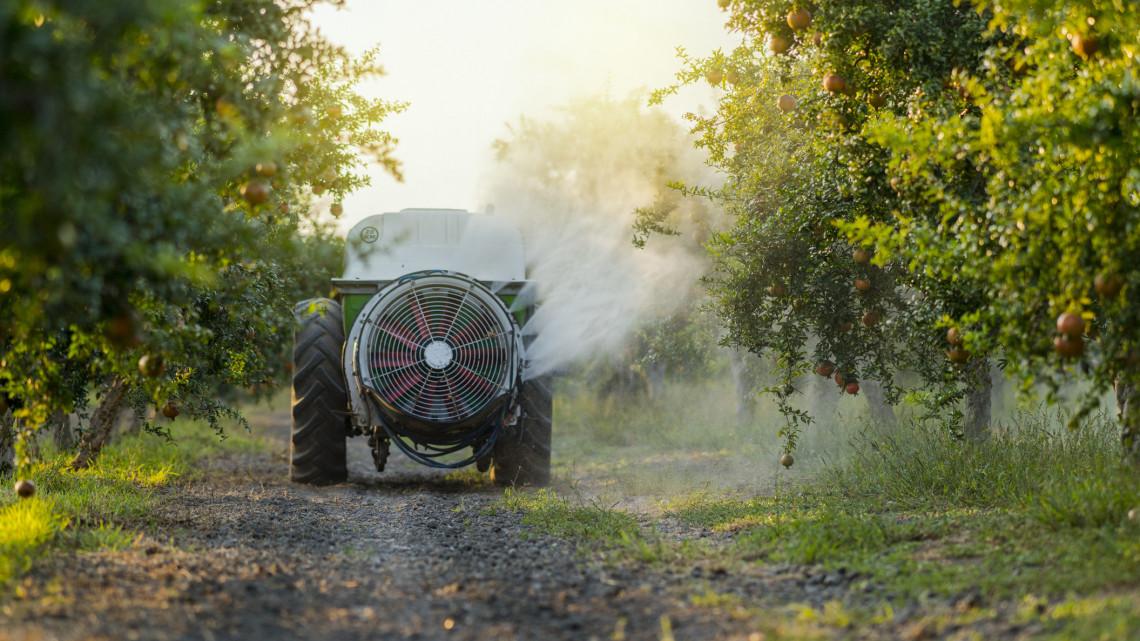 Veszélyben a gyümölcsök: az enyhe tél miatt nőtt a fertőzések száma