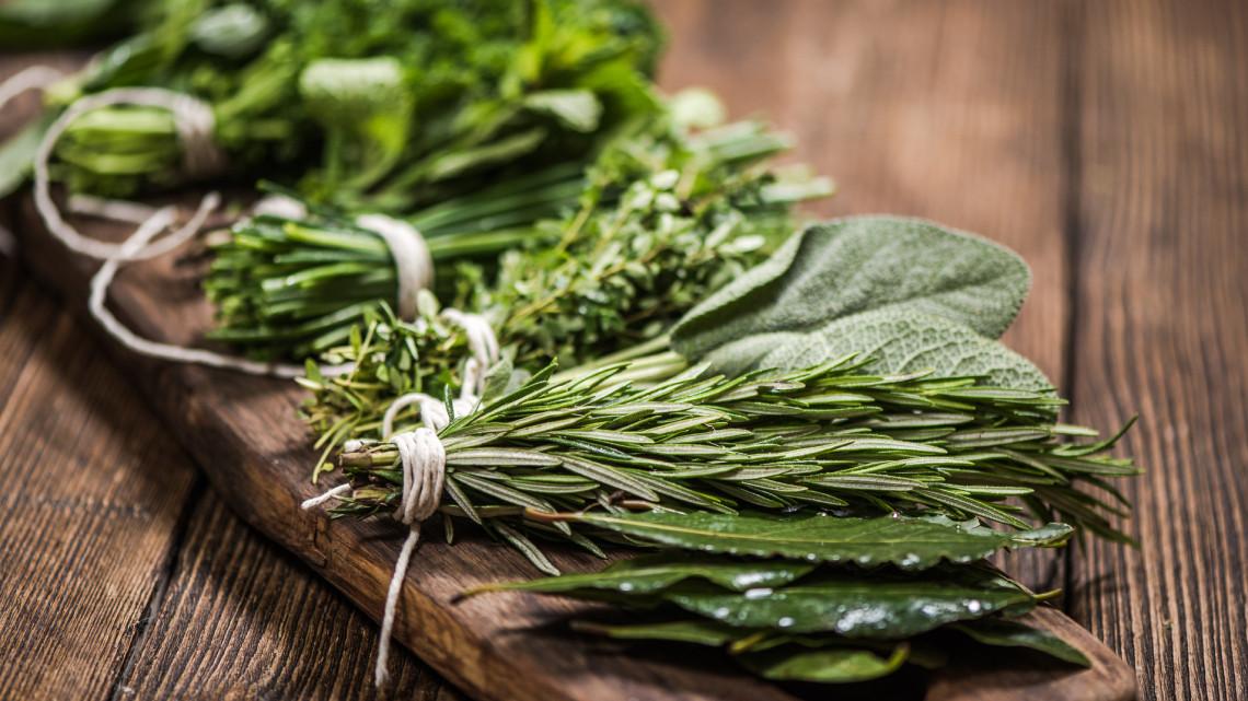 10 fantasztikus fűszernövény, ami egész évben a konyhádban viríthat