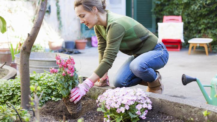 Így vészeld át a kötelező karantént: itt az ötpontos kertészeti feladatlista