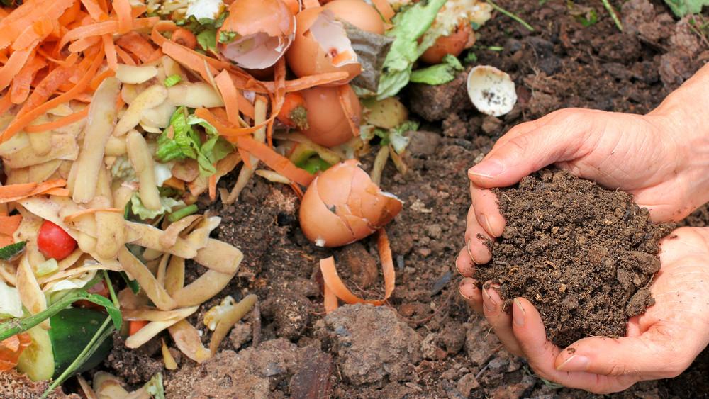 Környezetkímélő, imádják a növényeid, és még spórolhatsz is vele: így komposztálj okosan