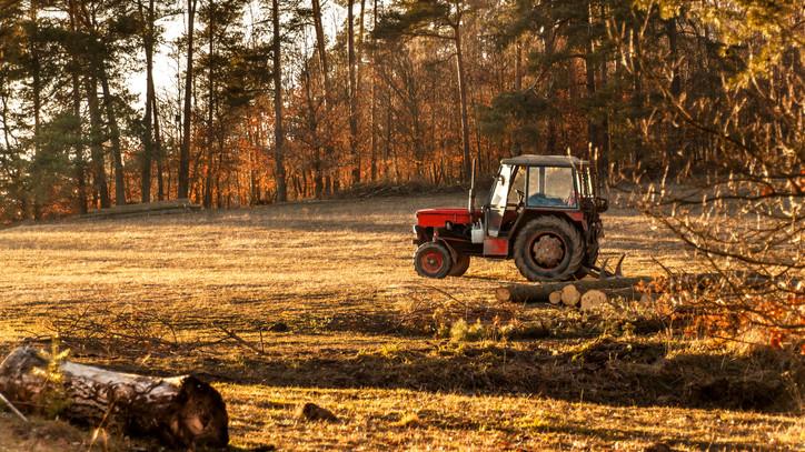 Jó hír a gazdáknak: a kijárási korlátozás alatt nem kell külön igazolást bemutatniuk