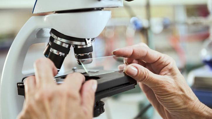 Blogot indított a Semmelweis Orvostörténeti Múzeum: bemutatják a járványok világát