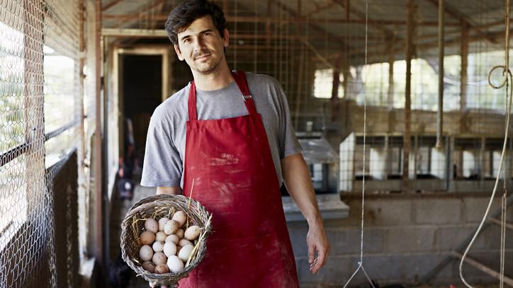 Húsvétkor is lesz friss tojás a boltok polcain: mutatjuk, mennyivel drágul majd