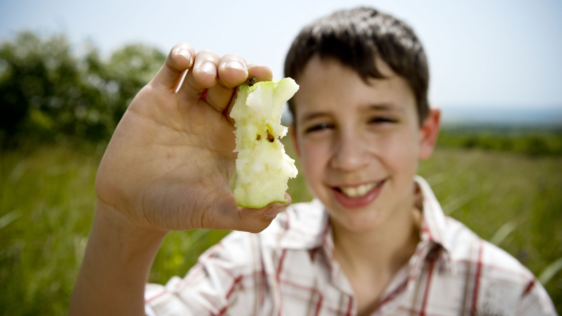 Te jó ég!  A magyar gyümölcs 30-40 százaléka a feketepiacon végzi