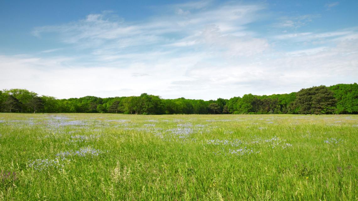 Természeti csoda: natúrpark címet adományoztak a magyarországi területnek