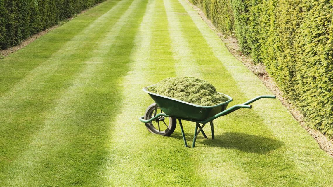 Ezek a legfontosabb kerti munkák áprilisban: itt a 7 pontos feladatlista