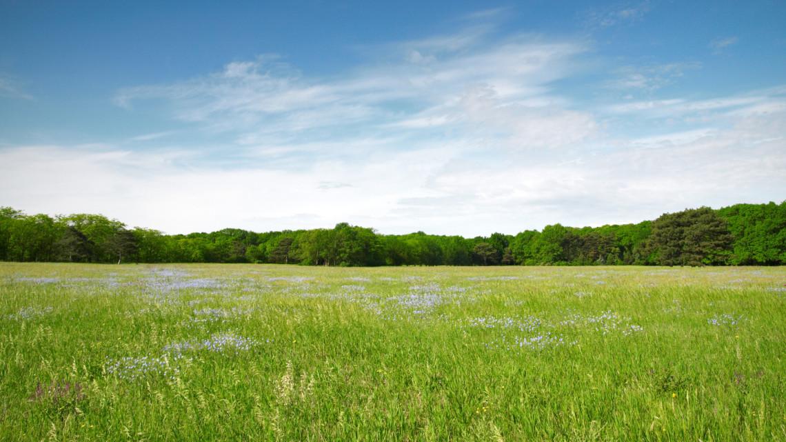 Rengeteg földet értékesítettek: április végén folytatódik a program