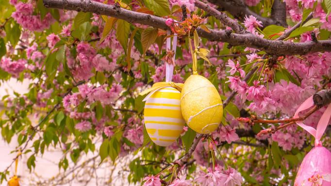Nincs kész a húsvéti dekoráció? Online ad tippeket a zengővárkonyi Míves Tojás Múzeum