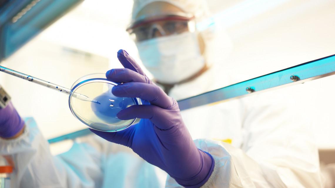 Elárulta a debreceni szakértő: így lassulhat hazánkban a koronavírus-járvány terjedése