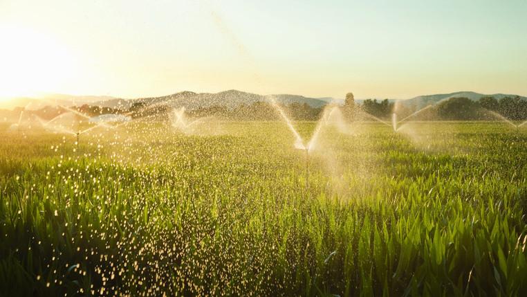 Segítség a gazdáknak: mentesülnek a vízkészletjárulék-fizetéstől a járvány alatt