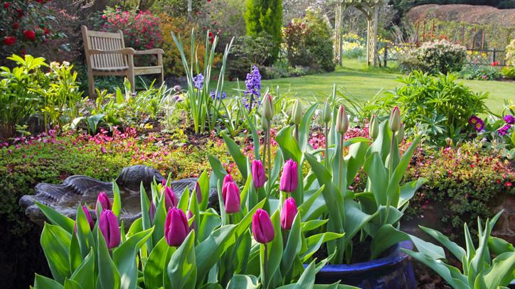 Ezek most a legfontosabb kerti munkák: itt az 5 pontos feladatlista