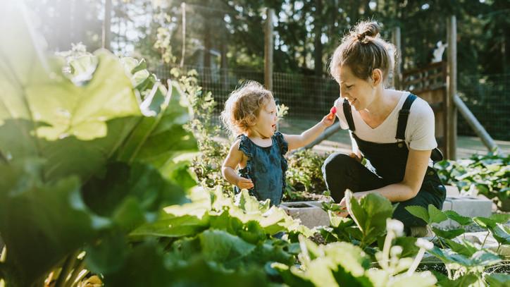 Hihetetlen, mit művel a testeddel a kertészkedés: erről kevesen tudnak