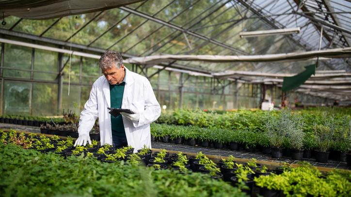 Fókuszban a biológiai sokféleség: összefogás hazánk természeti kincseiért