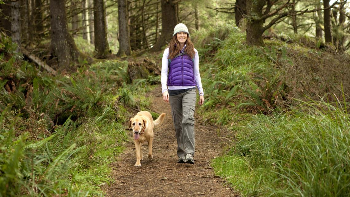 Súlyos veszélyre figyelmeztetnek: ezért könnyen bajba kerülhetünk az erdőkben