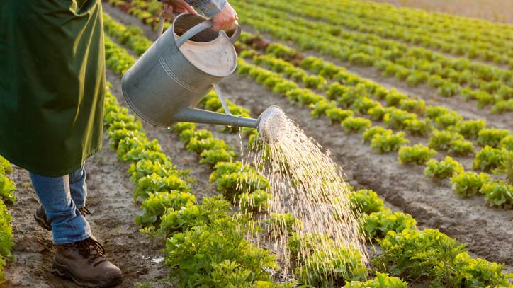 Vízkorlátozást vezettek be az aszály miatt: veszélyben az ivóvízellátás?