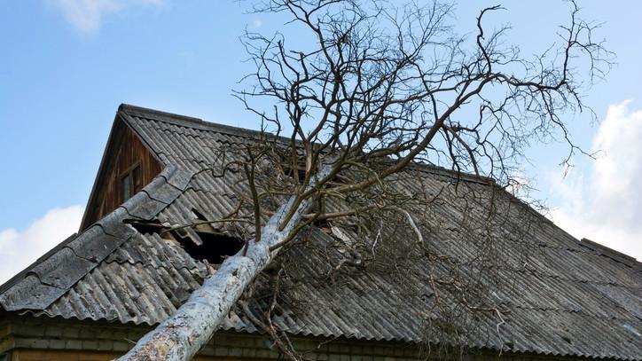 Letarolta a szeles idő Szabolcs megyét: így pusztított a vihar