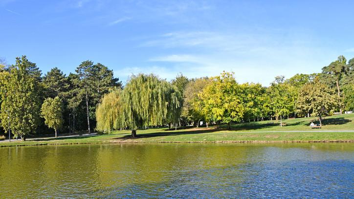 Fokozatosan nyit újra a vidék: egyre több park és pihenőhely látogatható országszerte