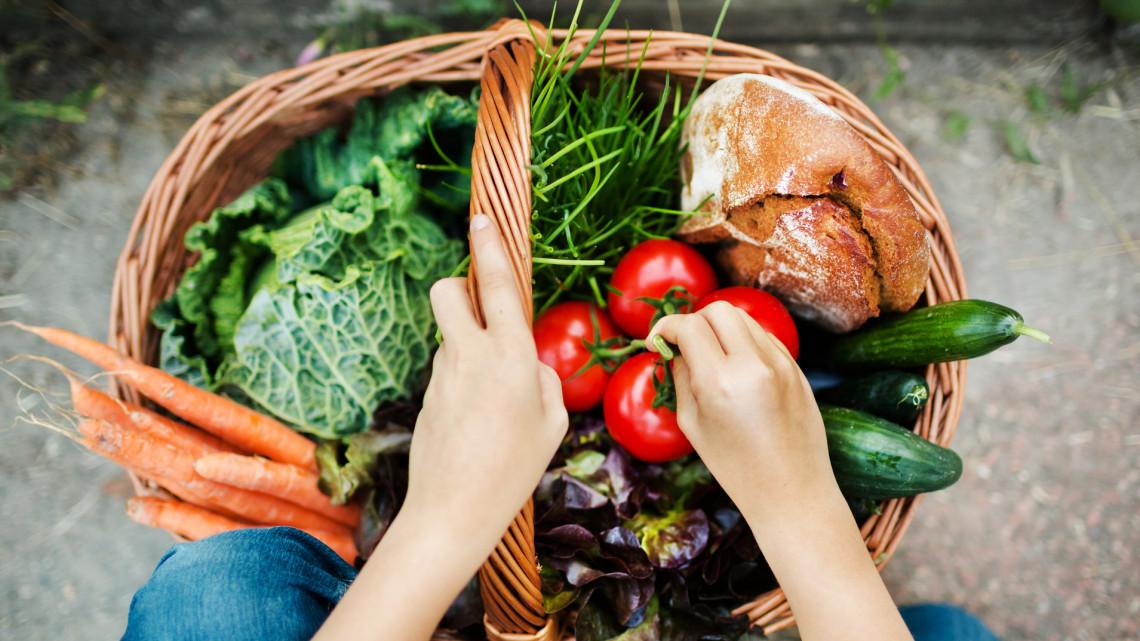 Fantasztikus kezdeményezés indult: helyi gazdák minőségi, friss élelmiszereit rendelhetjük