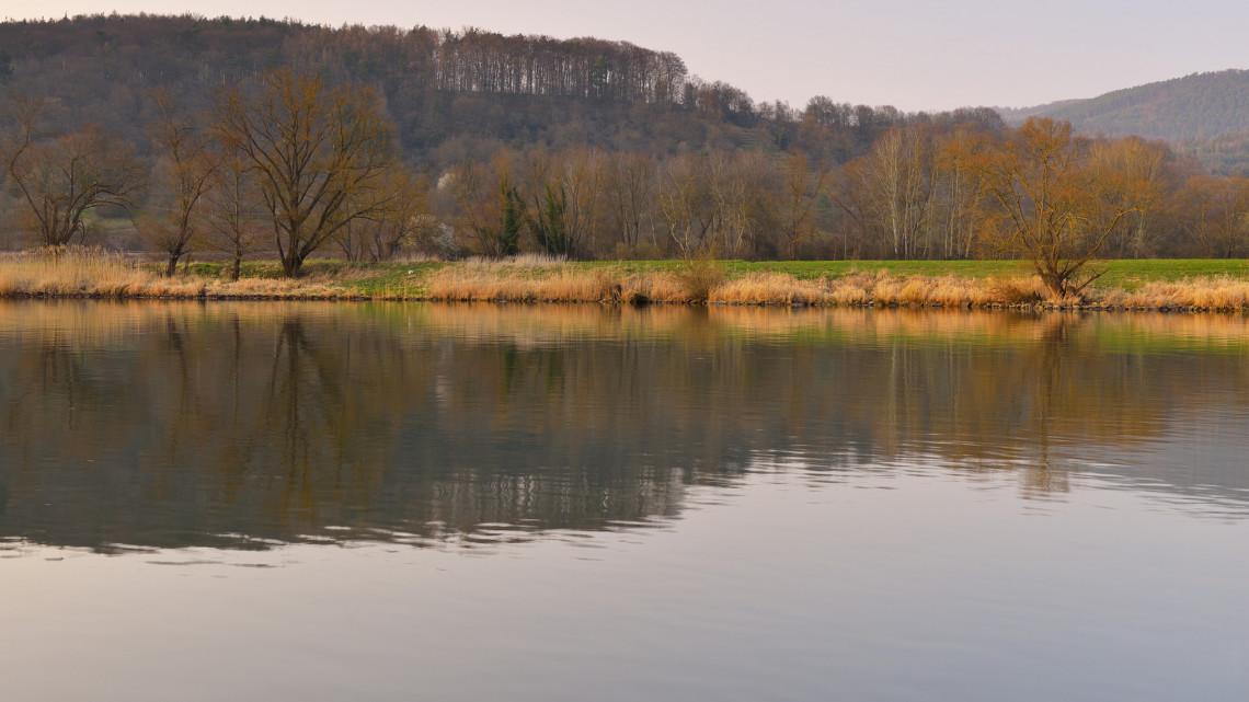 Lecsaptak a pusztító halfajra: rendkívüli károkat okozhatott a magyar vizekben