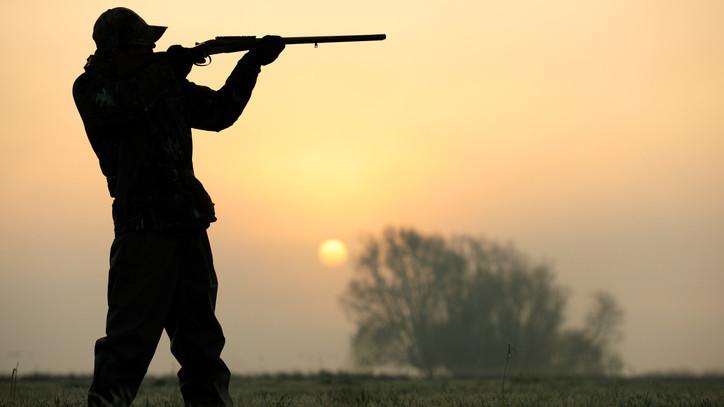 Lecsapott a rendőrség: milliós kárt okozott a hivatásos vadász