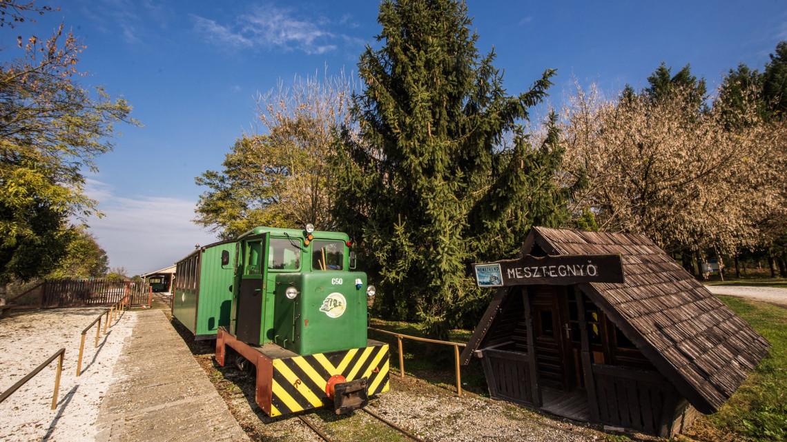 Ébredezik az erdei turizmus: ismét üzembe áll a vasút Mesztegnyőn