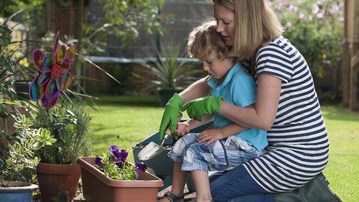 Allergiásként sem kell lemondanod a virágoskertről: 5+1 növény, amit bátran nevelhetsz a kertedben