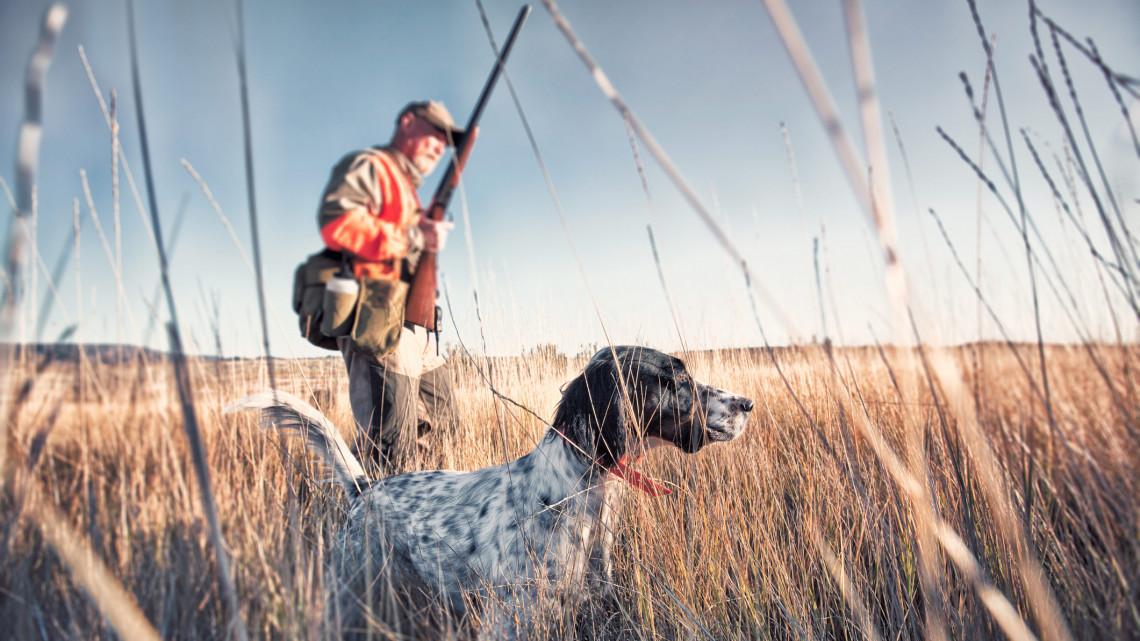 Újra érkezhetnek hazánkba vadászok Ausztriából: ezek a feltételek