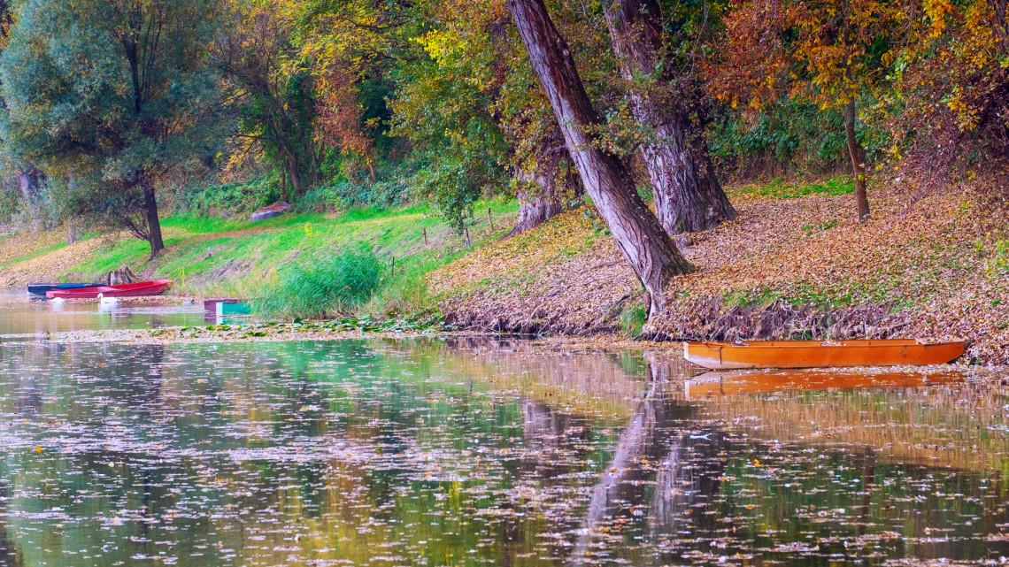 Szinte már csak Magyarországon látni a csodás természeti jelenséget: így tűnt el Európából